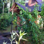 Hütte in Amazanga